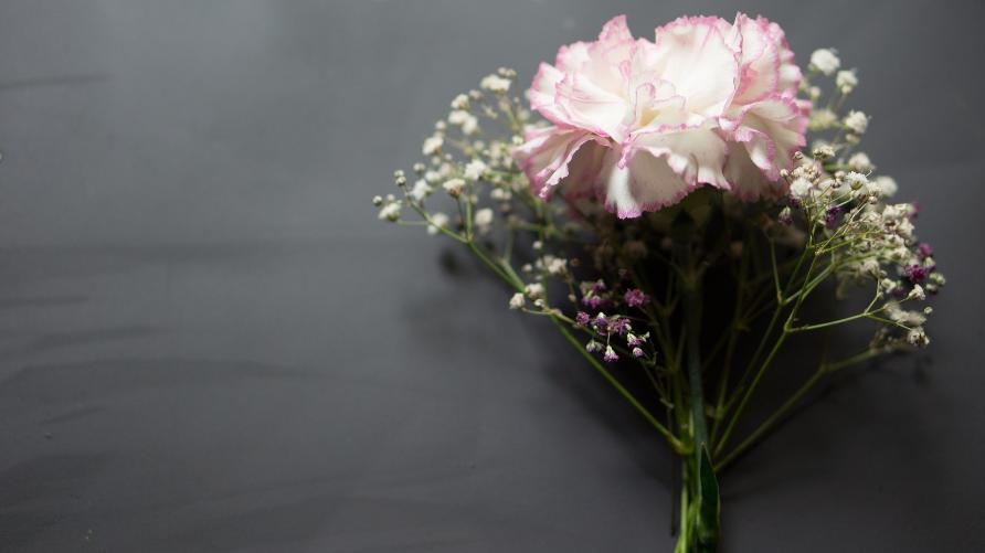 Zdjęcie przedstawia lezące kwiaty na szkolnej tablicy